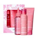 Весенний лимитированный набор средств для волос LADOR Blossom Edition Set